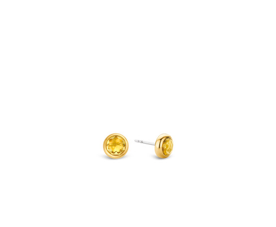 Gold Plated Silver Stud Earrings 7748TY