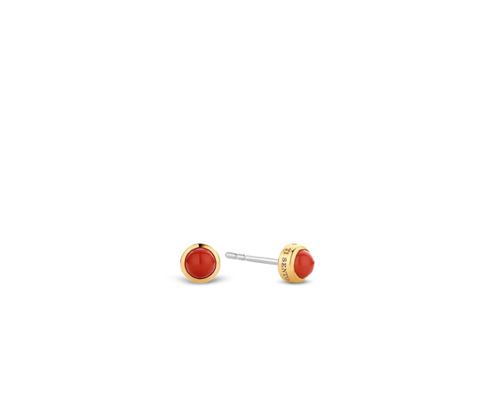 Ti Sento Gold Plated Silver Stud Earrings 7597CR
